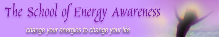 the_school_of_energy_awareness